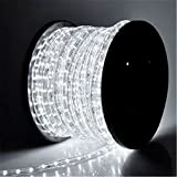 PYSICAL 110V 2-Wire Waterproof LED Rope Light Kit for Background Lighting,Decorative...