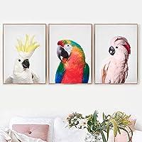 MacawsCockatooオカメインコ壁アートキャンバス絵画鳥ポスターとプリント動物壁アート写真リビングルームの装飾40x60cmx3フレームレス
