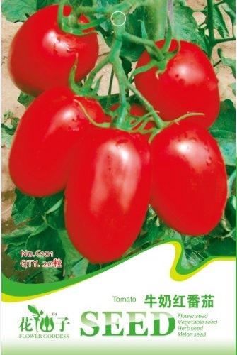 Légume type de 20pcs lait de tomate rouge graines balcon / sac c101