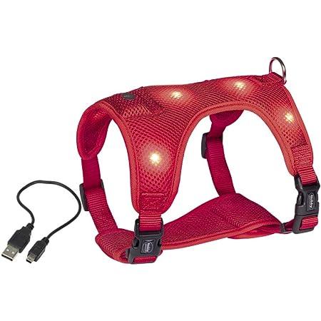 Feiling Led Licht Hundegeschirr Kleine Hunde Verstellbare Welpengeschirr Leuchtend Pastell Brustgeschirre Laufgeschirre Vest Sicherheits Geschirr Usb Aufladbar Gassigehen Bei Nacht Xs Pink Haustier