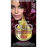Garnier Olia Ammonia-Free Brilliant Color Oil-Rich Permanent Hair Color, 4.62 Dark Garnet Red (Pack of 1) Red Hair Dye (Packaging May Vary)
