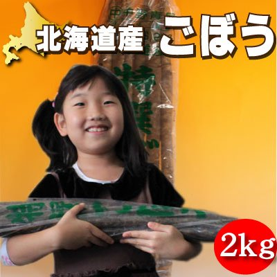 北海道産 土付き ごぼう 4kg
