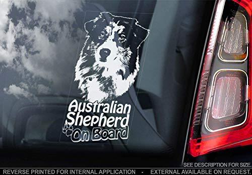 Australian Shepherd - Autoaufkleber - Hund Schild Fenster, Stoßstange Aufkleber Geschenk - V003 - Weiß/Klar - Interne Rückwärtsgang Aufdruck, 195x100mm