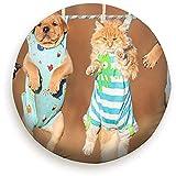 American Staffordshire Terrier Cachorros Animales Vida Silvestre Perro Rueda De Repuesto Cubierta Del Neumático Impermeable A Prueba De Polvo Universal Para Muchos Vehículos