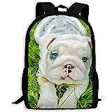 Large Backpack,Unisex Shoulder Book Bags,Casual Rucksack,Adjustable Pack College Cute White Shar Pei Blue Eyes in The Grass Outdoor Dayback,Oxford Travel Bag,Laptop Bag,Kids Adult School Bag