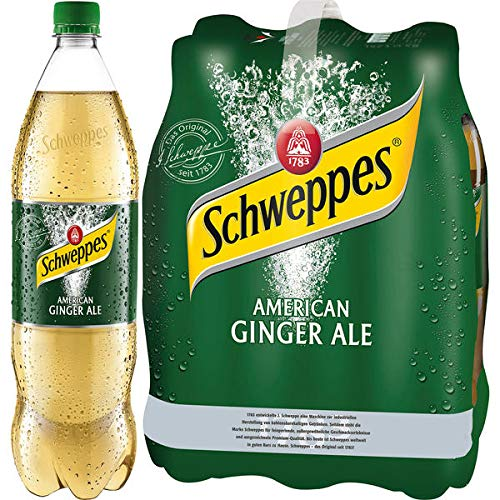 DPG Schweppes American Ginger Ale 6 x 1,25l (inkl. 1,50 Euro Pfand)