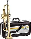 JUPITER JTR500A Bb Trompete, Schuledition, lackiert, ABS-Koffer