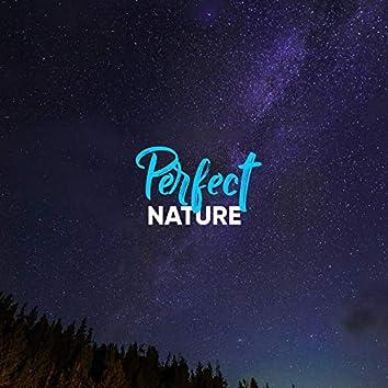 Perfect Nature, Vol. 12