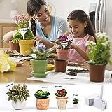 Zoom IMG-2 etichetta giardino etichette di piante