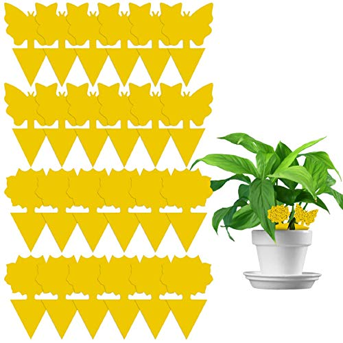 Dwcom 24 Pack Sticky Fruit Fly and Fungus Gnat Trap Yellow Sticky Bug Insect Killer for Indoor and Outdoor Houseplant