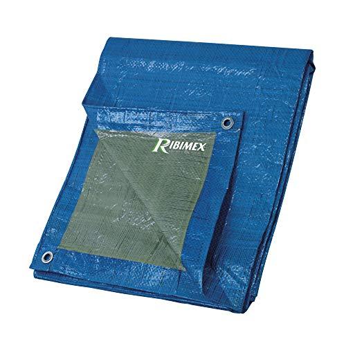 Ribimex PRB06503X04 Telo di Protezione, 3 X4 m, 65 gr, Multicolore