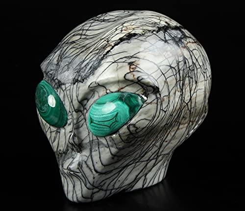 Skullis 4.1' Black Network Jasper Star Being Female Alien Crystal Skull Companion with Gold Tiger's Eye Eyes, Hand Carved Gemstone Fine Art Sculpture, Reiki Healing Stone Statue.198