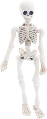 buena calidad Guoyy Esqueleto de Modelo Humano Mini Figura Juguete Halloween Halloween Halloween  garantizado
