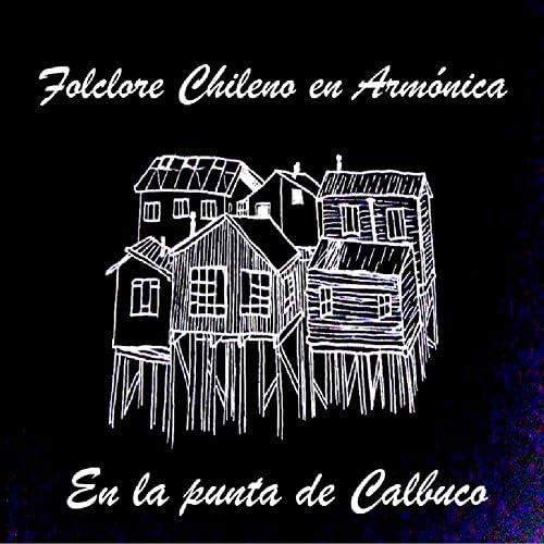 Folclore Chileno en Armónica