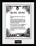GB Eye, Death Note, Death Note, Fotografia Enmarcada, 40 x 30 cm