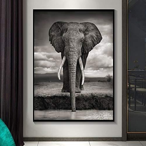 Nordische moderne afrikanische große Elefant Schwarz-Weiß-Tier Leinwand Malerei Kunstdruck Poster Bild Wand Wohnzimmer zu Hause rahmenlose dekorative Malerei A34 60x90cm