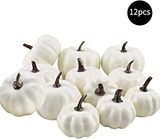 Exceedt 12 PCS Rustic Assorted Sizes White Artificial Pumpkins Fall Thanksgiving Decorating Harvest Embellishing and Displaying for Halloween