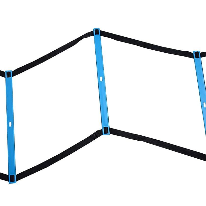 罹患率結核会員スピードラダー フットボールのトレーニングスピードラダー、便利なキャリングバッグ付きスピードトレーニング機器、スピードアジリティラダー (サイズ さいず : 6M)