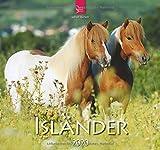 Isländer: Original Stürtz-Kalender 2020 - Mittelformat-Kalender 33 x 31 cm