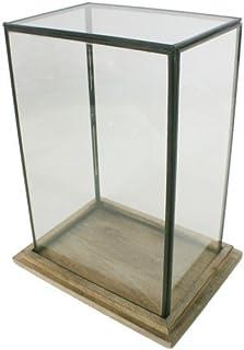 CAL FUSTER - Urna de Cristal Rectangular. Medidas: 33x25x18 cm.