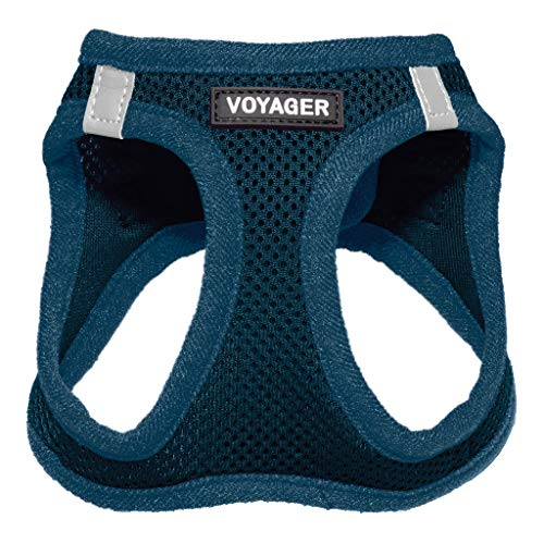 """Voyager Step-in Air Dog Harness - All Weather Mesh, Step in Vest Harness for Small and Medium Dogs by Best Pet Supplies, Blue (Matching Trim), L (Chest: 18-21"""") (207-BUW-L)"""