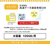 softbank 超大容量100GB prepaid DATA SIM (12ケ月, SIMのみ)