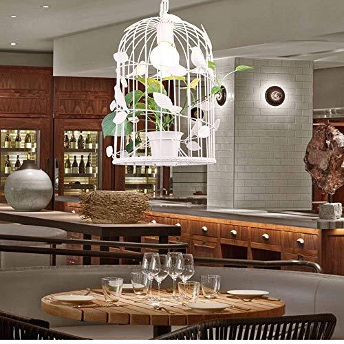 ZGQA-Lámpara de techo para plantas de jaula, minimalista, moderno, creativo, pasillo y terraza, restaurante, tienda, decoración, LED, 30 x 51 cm, hermoso