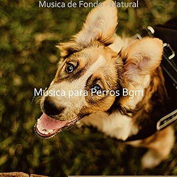 Musica de Fondo - Natural