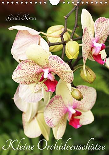 Kleine Orchideenschätze (Wandkalender 2021 DIN A4 hoch)