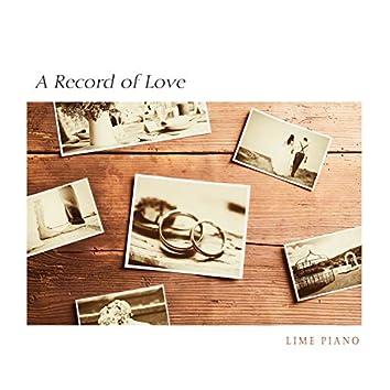 사랑의 기록