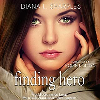 Finding Hero: A Young Adult Mystery cover art