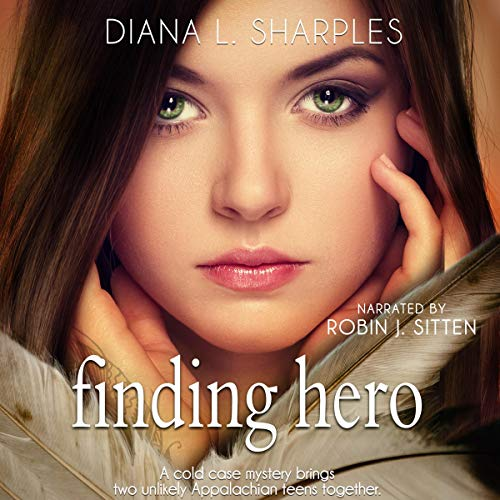 Finding Hero: A Young Adult Mystery Titelbild