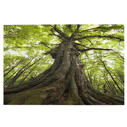 PUIO Sierra calar de 1000 Piezas,Foto Vertical Árbol Viejo Bosque Verde,Juegos Rompecabezas imágenes para Adultos y niños Regalo graduación de Boda Familiar
