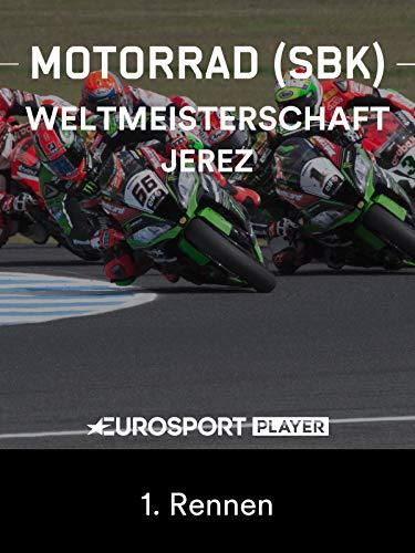 Motorrad: FIM Superbike Weltmeisterschaft 2019 in Jerez de la Frontera (ESP) - 1. Rennen