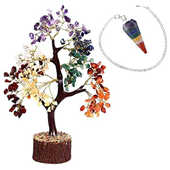 Shawn Seven Chakra Gemstone Tree + 7 Chakra Pendulum | Set of 2 | Reiki Healing Crystals feng Shui Good Luck Tree | Home Office Kitchen décor