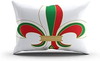 Qryipd Throw Pillow Cover Comfortable Print Fleur De Lis Bulgaria Flag Color Abstract Antique arms Living Room Car Sofa Bedroom Polyester Hidden Zipper Queen Pillowcase 20x30 Inch Cushion Case