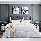 PINZON All-Season White Down Alternative Quilted Comforter - Corner Duvet Tabs - Hypoallergenic - Down Alternative Fill - Machine Washable - Duvet Insert or Stand-Alone Comforter - Queen