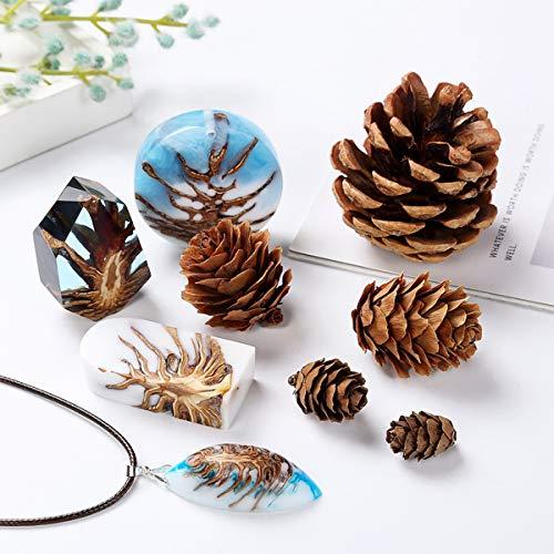 iSuperb 27 Stück Pinienzapfen Tannenzapfen Lärchenzapfen Pine Cones, Weihnachtsdekoration, Party-Dekoration, Dekoration, Party-Zubehör