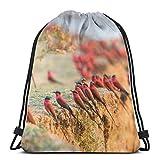 negozio a prezzi accessibili uccelli ape mangiatori flock rock zaino zaino borsa leggero palestra viaggi yoga casual snackpack borsa a tracolla per escursionismo nuoto spiaggia