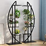 Tribesigns 5-Tier Plant Stand Pack of 2, Multi-Purpose Curved Display Shelf Bonsai Flower Plant Stand Rack for Garden, Patio, or Balcony, Home Use (Black)