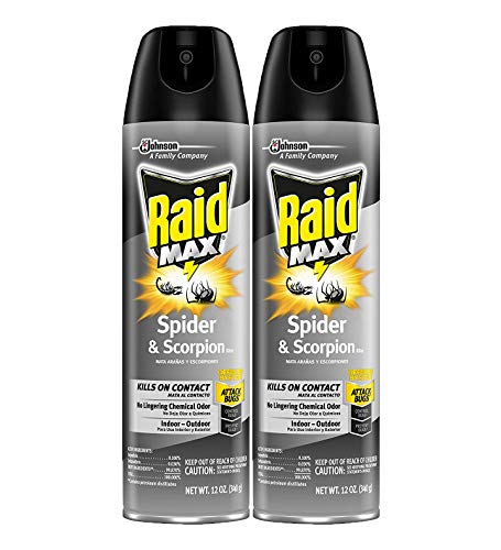 Raid Max Spider & Scorpion Killer
