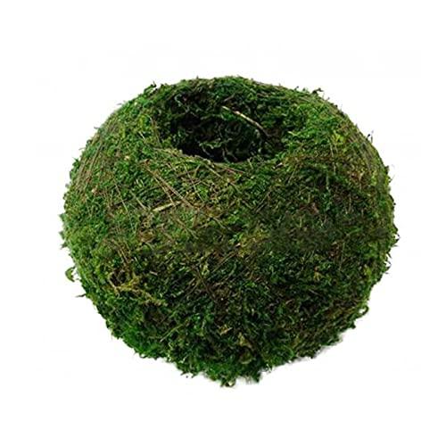 YAOLUU Tiestos para Plantas Simulación Moss Ball Flower Pot Forma DIY Forma Jardinería Potted Suculento Planter Pot Inicio Micro Paisaje Personalidad Decoración Macetas Balcon (Size : 6cm)