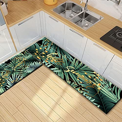 OPLJ Alfombra de Cocina Antideslizante para Suelo Perro Gato Alfombra de baño Impresa Felpudo de Entrada tapete alfombras de Moda para Dormitorio A9 40x120cm