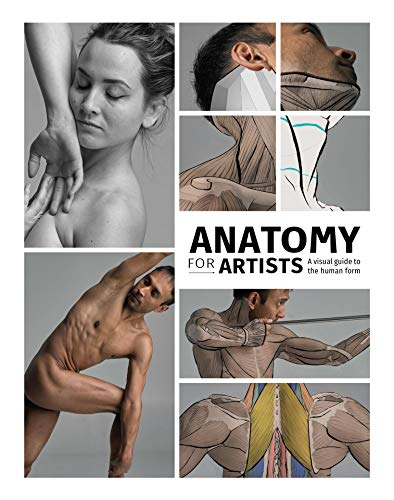 Anatomy for Artists: A visual guide to the human form (3d Total Pub)