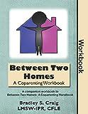 Between Two Homes: A Coparenting Workbook - Bradley Craig