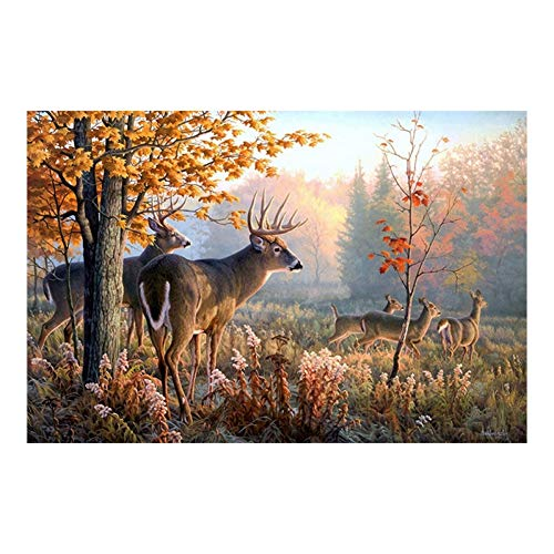 LWLNB Decorative Paintings Prints Canvas Wall Art Poster 1 Piece Forest Whitetail Deer Landscape Painting Living Room Elk Animals Pictures Home Decor Frame