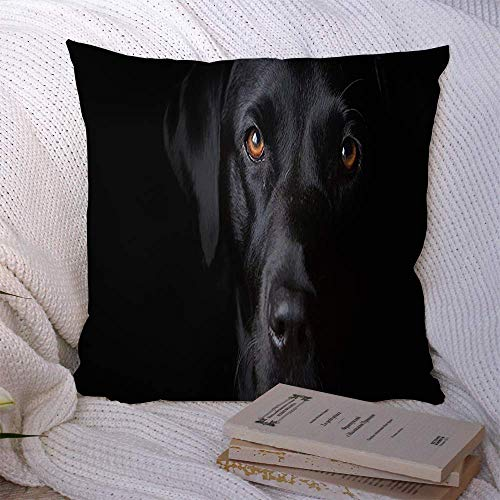 N\A Dekorative Kissenbezüge für Schlafsofa Couch Dog Black Novel Labrador Tiere Wildlife UK Nature Lab Niedlich Modisch Harry Fashion Norfolk Pet Soft Kissenbezug