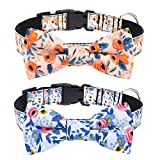 Malier 2 Pack Dog Collar with Bow tie, Cute Flower Pattern Dog Collar with Adjustable Buckle Collar for Small Medium Large Dogs Puppy