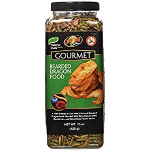 Best Food for Bearded Dragon Reviews & Guide 2019 - My Life Pets