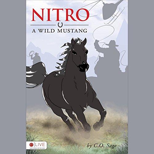 Nitro audiobook cover art
